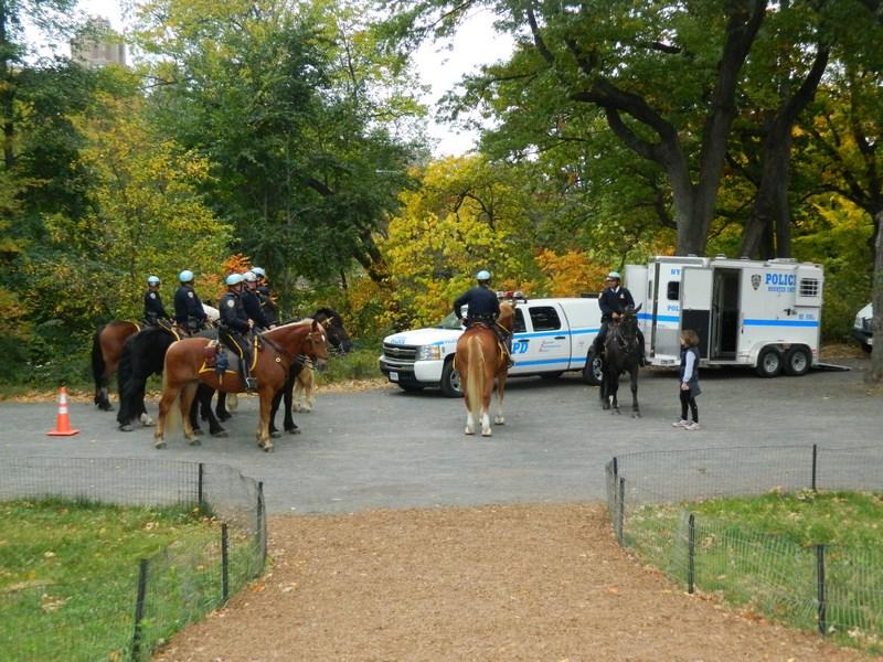 Central Park (14) (Copier)